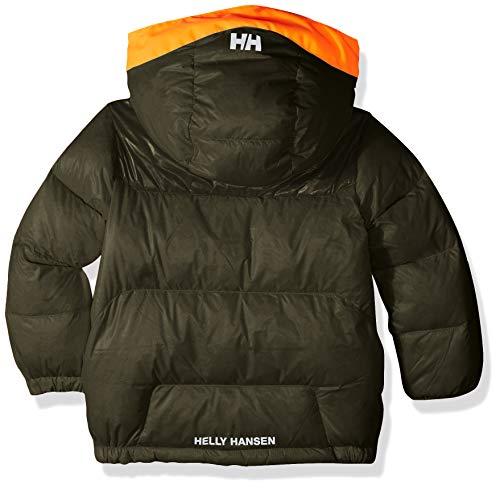 Helly Hansen Kids & Baby Frost Hooded Lightweight Puffy Down Jacket, 469 Forest Night, Size 1 image https://images.buyr.com/9jCB-353_019AqFXFRj6gg.jpg1
